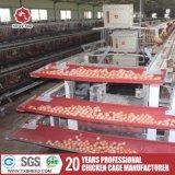 La capa de la jaula de Pollos Parrilleros para grandes granja avícola