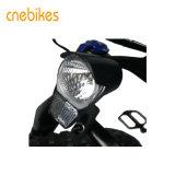 [48ف] [14.5ه] [لي] أيون بطارية درّاجة سمين كهربائيّة لأنّ عمليّة بيع