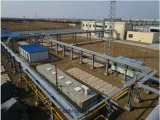 30, 000 Nm3/Day Biogas, das Pflanze ausbaut