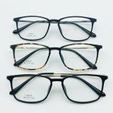 가벼운 플라스틱 강철 형식 금속 사원을%s 가진 광학적인 Eyewear 안경알 프레임
