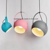 De hangende Lamp van de Tegenhanger met Kleur Zes voor Binnenlandse Verlichting