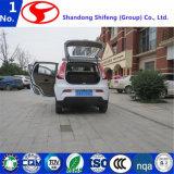 un'automobile elettrica elettrica D102 del motorino di modo/Shifeng automobile elettrica/del motorino