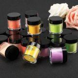 Chaud professionnel de la vente de l'acrylique Nail Art Poudre de paillettes de conception