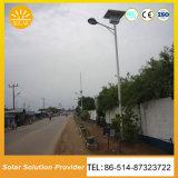 高性能のモノラル太陽電池パネルの太陽街灯LEDの照明装置