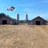 Einfacher und schneller Installations-Geflügelfarm-Huhn-Haus-Entwurf