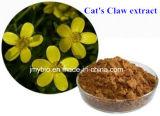 3%-5% extrait de la griffe du chat normal d'alcaloïde (taux : 4:1 ~20 : 1)