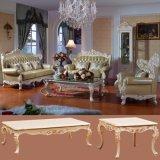 أثر قديم جلد أريكة يثبت لأنّ أثاث لازم بينيّة (506)