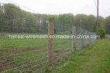8 ног - высокая растяжимая проволочная изгородь злаковика поголовья игры для коровы