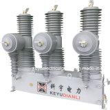 Im Freien Hochspannungsvakuumsicherung des Hersteller-35kv 40.5kv