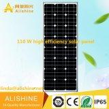 Venta ligera toda del fabricante de China LED en una luz solar de la calle LED con el panel solar