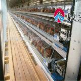 L'élevage de volailles de l'équipement de la machinerie agricole avec tétines