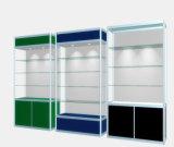 競争価格(LFDS0021)の高品質の金属の表示据え付け品