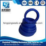 Guarnizione idraulica della polvere della guarnizione del pulitore dell'unità di elaborazione dell'anello di chiusura dell'asta cilindrica