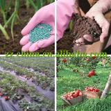 Fertilizzante composto del fornitore NPK di Jinan nell'elevata purezza