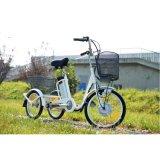 triciclo elettrico di 36V 250W con il cestino posteriore