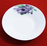 Vaisselle en céramique réglée de Dishware bon marché