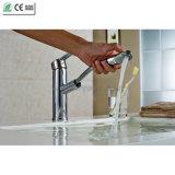 Вытяните вне латунный Faucet смесителя раковины кухни (Q13003)