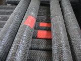 Torsione normale o d'inversione della rete metallica esagonale