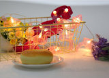 يزوّد عصافير شمسيّة خيط ضوء لأنّ داخليّة خارجيّة [ثنكسجفينغ] عرس عيد ميلاد طفلة [شوور برتي]