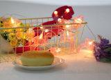 As aves alimentadas Luzes String Solar para Piscina Piscina Agradecimento aniversário de casamento partes chuveiro do bebê
