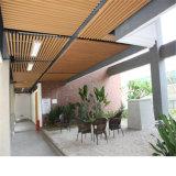 Plafond en plastique en bois du composé WPC pour l'hôtel, le restaurant, l'immeuble de bureau etc.