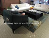 Sofà moderno italiano del tessuto del sofà del cuoio bianco (D-76-B)