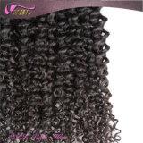 Extensions bouclées indiennes de cheveux crépus d'Afro de cheveux humains de Vierge