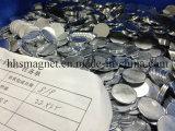小さく小さい円形ディスクは冷却装置、科学、クラフトのために、冷却装置磁石をマルチ使用する