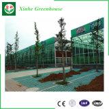 Vehículos/jardín/flores/invernadero del vidrio de la granja