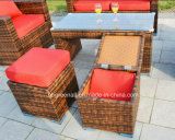 PEの藤の家具、屋外の藤のソファーセット