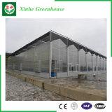 Лист PC/стеклянные/пластичные рамки парника для овоща/цветка