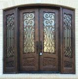Porte d'entrée extérieure de garantie de fer travaillé pour la Chambre