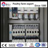 كلّ أنواع من مسخّن سعرات آليّة تجهيزات طبقة بيضة دجاجة قفص [بوولتري فرم] منزل تصميم لأنّ عمليّة بيع