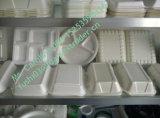 Tira de espuma PS recipiente de alimentos da linha de produção