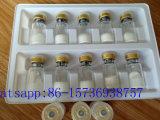 Peptide all'ingrosso Ipamorelin Ipamorelin liofilizzato sviluppo umano Paypal