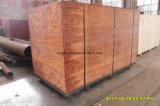 공장 판매 나사 유형 목제 톱밥 연탄 압박 기계