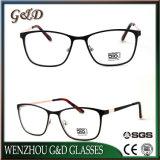 Volle Rahmen-neue Form-Brillen Eyewear optischer Metallrahmen