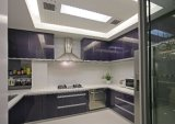 Neuer Entwurfs-hoher glatter Hauptmöbel-Küche-Schrank Yb1710605