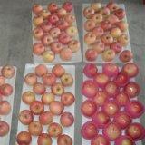 Nuovo cinese Apple del raccolto