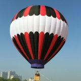 Aerostato di aria calda polimorfico variopinto per da andare scatto facente un giro turistico di cerimonia nuziale della concorrenza di volo