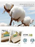 Weiche Schlafzimmer-Möbel - Bett - Sofa-Bett