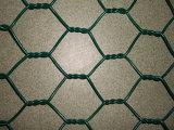 Het plastiek bedekte het Hexagonale Netwerk van de Draad met een laag