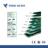 het Gehard glas van 319mm met Ronde Randen/vlak Randen/Gesneden Grootte
