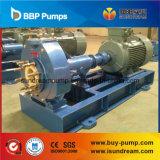 소성 물질 ISO 2858 /DIN24256의 Cp/Sjb 화학 펌프