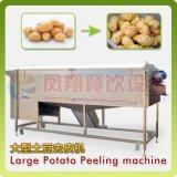 Grand type igname de chine de vis/pomme de terre/machine végétale de lavage et écaillement de raccord en caoutchouc