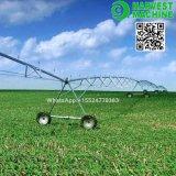 Sistema de irrigación de regadera de la granja de China con el arma de la cabeza de biela para la venta