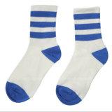 Progettare i calzini per il cliente del banco di disegno dei calzini del vestito dal banco