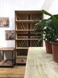 Мебель восхитительного шкафа книги античная