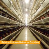 Автоматический уровень заряда аккумулятора цыпленка отсек для фермы