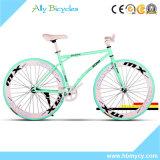 "Bici/arco iris bicicleta fija de la montaña Bike/60cutter camino Bike/26 """